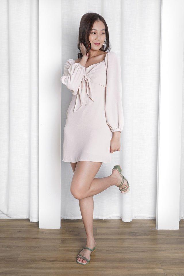 Amelia Mini Dress
